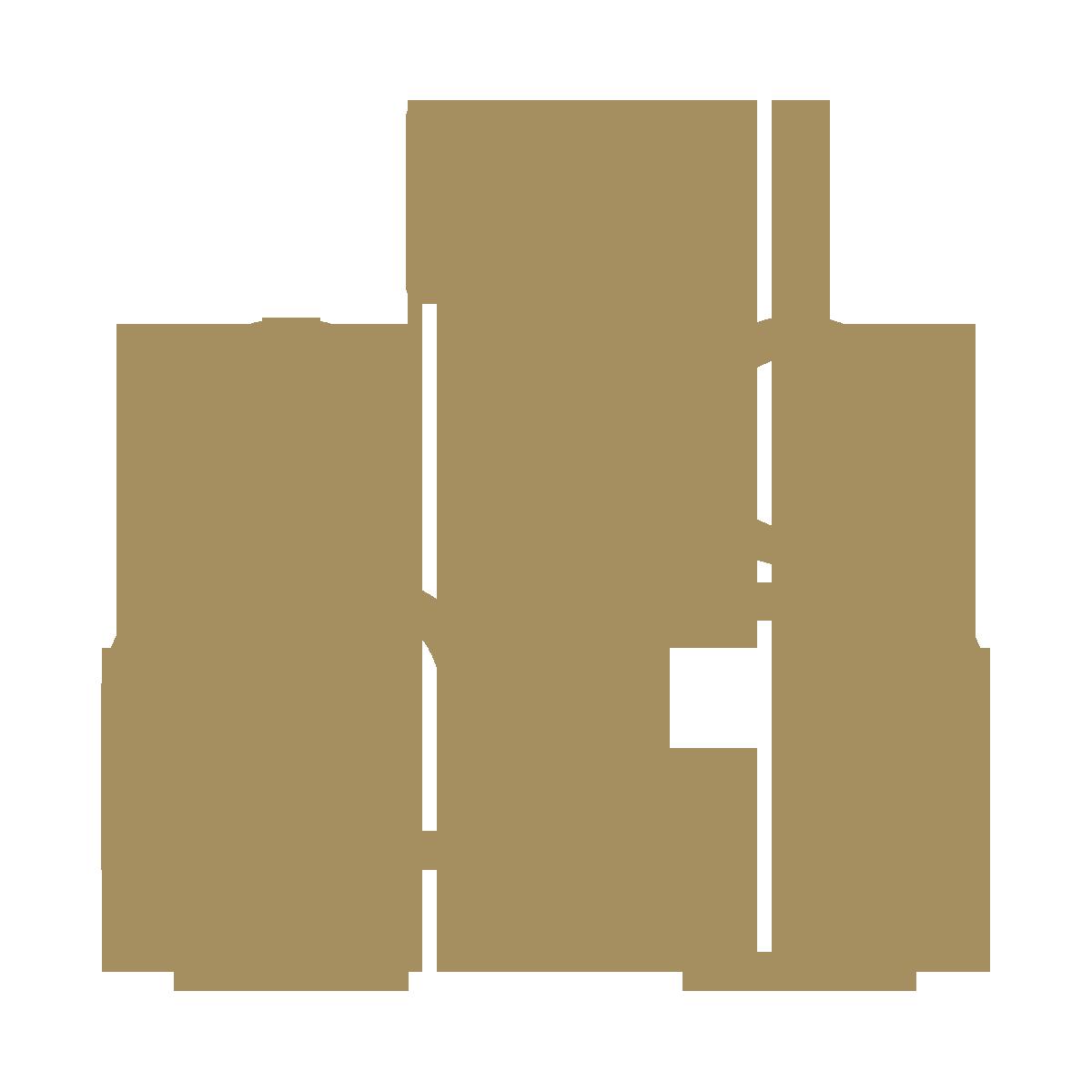 icon-gesprek